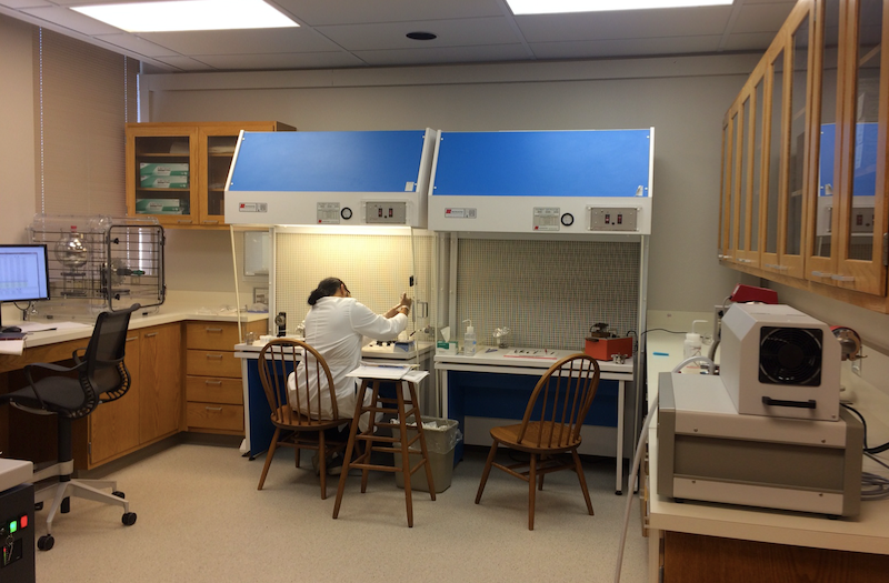 TIMS lab laminar flow benches